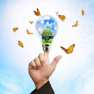 Landscape Design Experts light bulb filled with tree and sky surrounded by butterflies