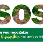 SOS, your lawn's cry for help, landscape maintenance