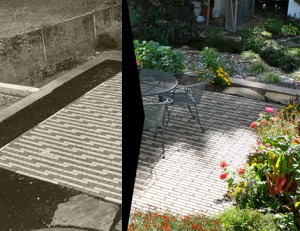 patio plants before and after landscaping
