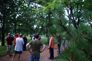 Missouri Botanical Garden landscaping st. louis missouri