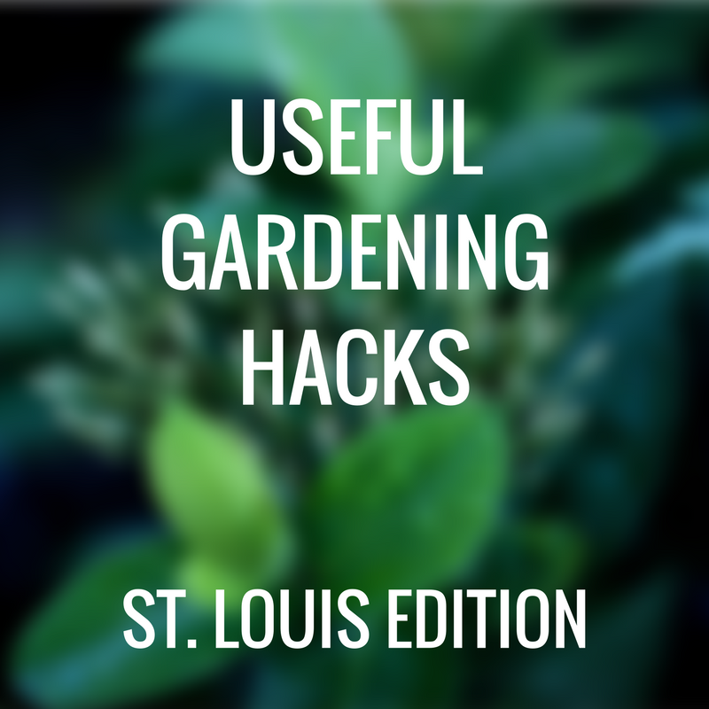 useful gardening hack st louis edition