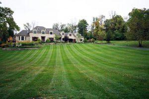 best lawn mowing company st louis