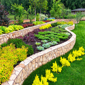 St Louis Landscape Maintenance