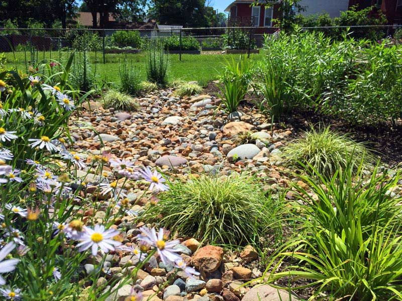 Another Rain Garden - Quiet Village Landscaping Project Gallery Landscape Design St Louis