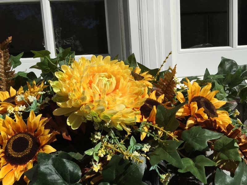 Autumn Window Flowers