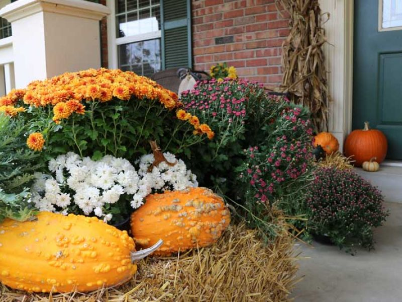 Fall Decorating Services 2