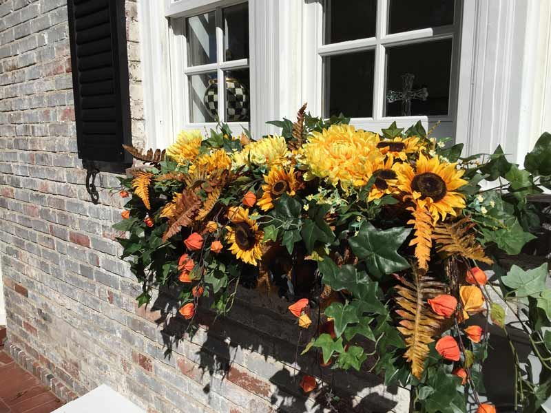 Fall Window Flowers