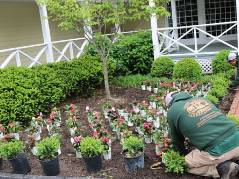 Planting services st louis landscape design st louis for Landscape design st louis