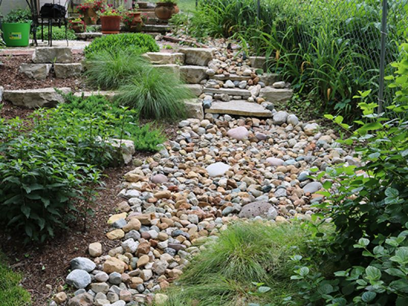 Rain gardens st louis landscape design st louis for Eco landscape design