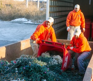Quiet Village Landscaping team in a dumpster of recycled holiday lights