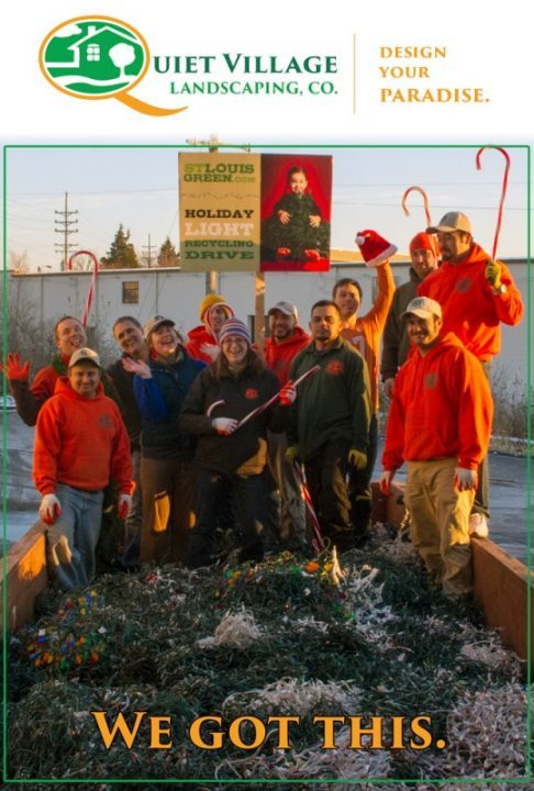 sorting holiday lights for st. louis green, Quiet Village Landscaping's got this