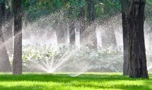 irrigation control