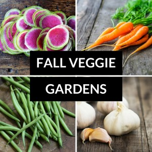 what to plant in fall