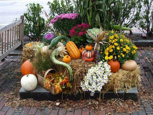 Get Your Yard Ready For Fall