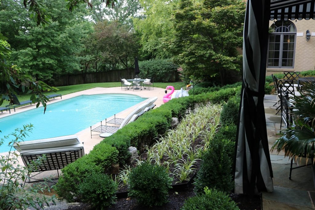 pool surrounding landscaping in St. Louis