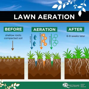 What lawn aeration does for your lawn