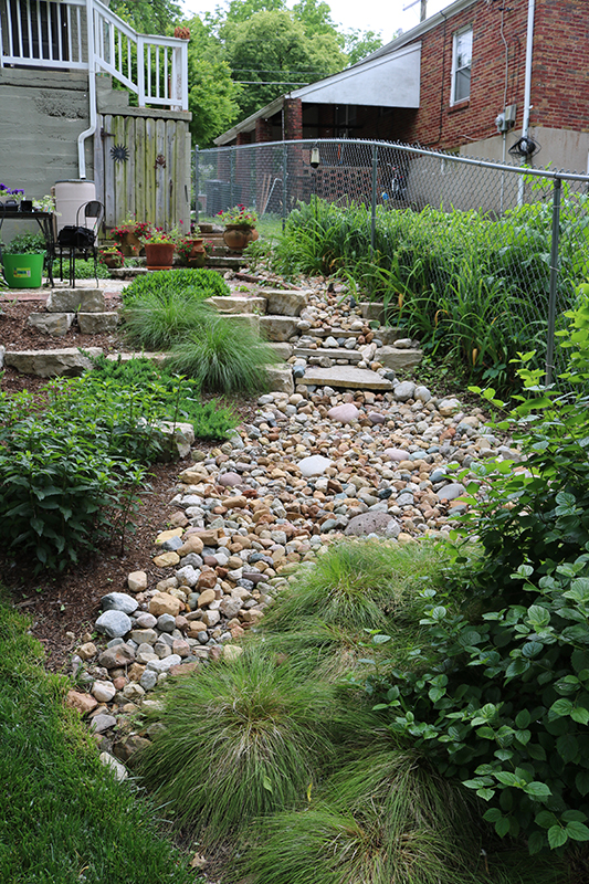 Drainage solutions st louis landscape design st louis for Landscape design st louis